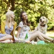 Two girlfriends with dog on the picnic — Stock Photo #55243225