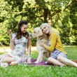 Portrait of the girlfriends hugging friendly dog — Stock Photo #55243427