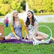 Two girlfriends laughing during picnic — Stock Photo #55245729