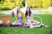 Two girlfriends laughing during picnic — Stockfoto