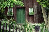 Old house with a deep green door — Stockfoto