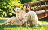 Attractive woman with two dogs — Stock Photo