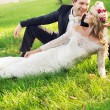 Laughing groom with his lovely wife — Stock Photo #59239819