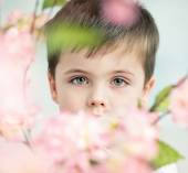 Handsome little man with a flower — Stock Photo