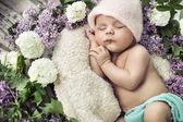Cute boy sleeping among the flowers — Stock Photo