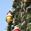 cristmas balls and new year's fir tree — Foto Stock #56316763