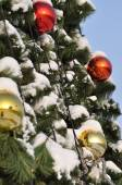 cristmas balls and new year's fir tree  — Foto de Stock