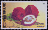 A stamp printed in Thailand shows image of Eugenia malaccensis Linn — Stock Photo