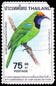 A stamp printed in Thailand shows image of Chloropsis aurifrons, To commemorate 9th Conference of ICBP Asian Section — Stock Photo