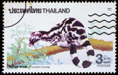 A stamp printed in Thailand shows image of Prionodon linsang or  — Stock Photo