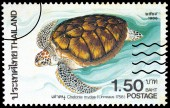 A stamp printed in Thailand shows image of Green turtle or Chelo — Stock Photo