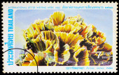 A stamp printed in Thailand shows image of Pectinia lactuca (Pal — Stock Photo