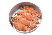 Streamed crabs in tray isolated on white background — Stock Photo