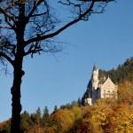 Castle of Neuschwanstein near Munich in Germany — Stock Photo #63002669