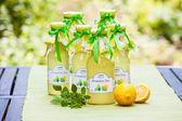 Flaskor med citronmeliss sirap — Stockfoto