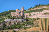 Ruin of castle Ehrenfels — Stock Photo