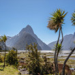 Milford Sound and Mitre Peak — Stock Photo #69571211