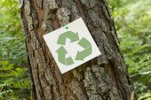 Recycle sign on a tree — Stock Photo