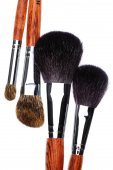 Four makeup brushes — Stock Photo