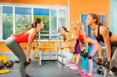 Young women exercising with dumbbells — Stock Photo