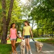 Two teenage walking with dogs — Stock Photo #52852677
