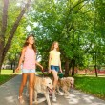 Teenage girls walking with dogs — Stock Photo #52852699