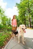 Teenage girl walks with dogs — Stock Photo