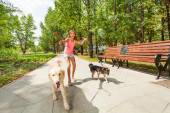 Teenage girl with running dogs — Stock Photo