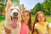 Couple happy girls with funny dog — Stock Photo