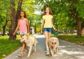 Two teenage walking with dogs — Stock Photo