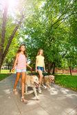 Teenage girls walking with dogs — Stock Photo