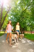 Teenage girls walking with dogs — Stock Photo