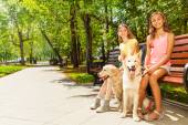 Two girls with dogs — Stock Photo