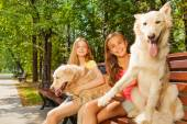 Teenage girls with their dogs — Stock Photo