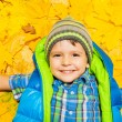 Boy laying in autumn leaves — Stock Photo #60426447
