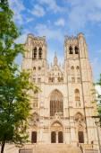 Cathedral des Saints Michel et Gudule — Стоковое фото