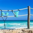 Stripped bikini hanging on ropes of pier — Stock Photo #60706819
