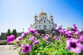 Cathedral of Christ the Savior — Stock fotografie