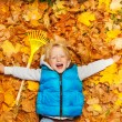 Blond boy laying on autumn leaves — Stock Photo #60955715