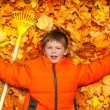 Boy laying on autumn leaves — Stock Photo #60955813