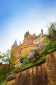 Hohenzollern castle at day — Stock Photo