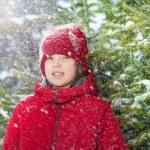 Boy in winter near fir tree — Stock Photo #66044575