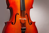 One violoncello fragment in vertical position — Stock Photo