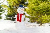 Snowman with blue hat and red scarf — Stock Photo