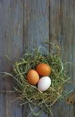 Nest with chicken eggs on old wooden board — Stockfoto