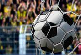 Ball in Goal Net with Cheering Spectators — Zdjęcie stockowe