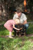 The girl feeds two dogs under supervision of the father — Stock Photo