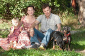 The family sits on a grass in park, nearby there are two dogs. — Stock Photo