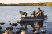 The hunter with two dogs moors to the coast — Stock Photo