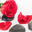 SPA stones and red rose — Stock Photo #69651335